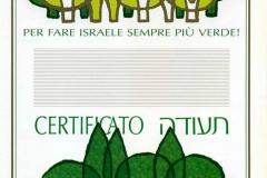 "Diploma ""Albero Lieto"""