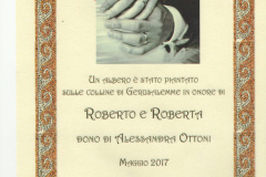 diploma-nozze
