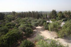 Ben-Shemen-Forst-Modiin-Amphi-and-Lookout-Yossiv-Zamir