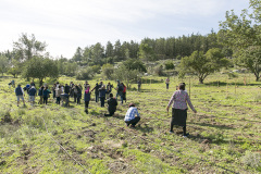 Christian-leaders-pastros-plant-in-the-Ben-Sheme-and-Tzora-Forests