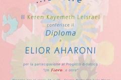 diploma-con-ok_modificato-1