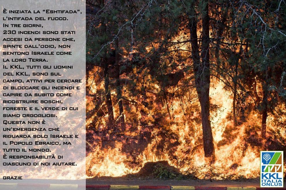 emergenza-incendi-2016