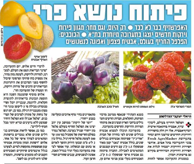 Frutta-israele