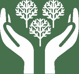 Giardini, Boschi e Foreste-image