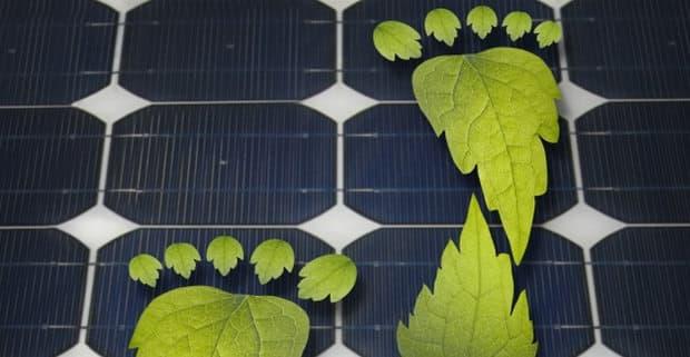 pannelli solari imitano fotosintesi