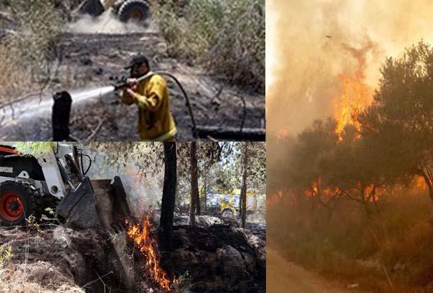 incendio foreste kkl israele