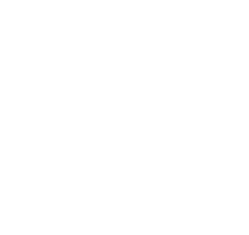 Libri d'Onore KKL-image