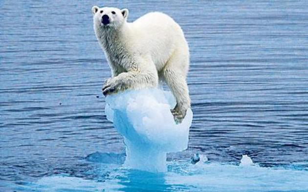 KKL | ghiacci polari aumento spessore
