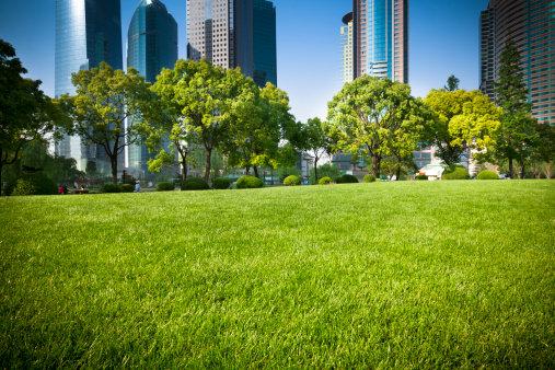 KKL   verde urbano
